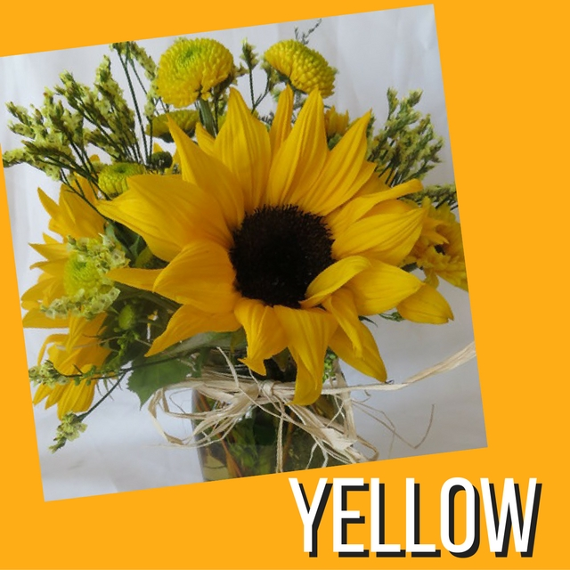 color meanings flowers pasadena texas yellow sunflowers