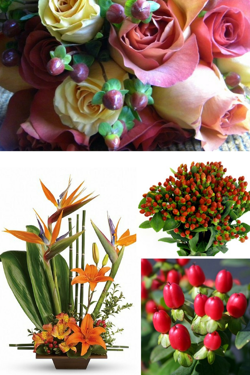 hypericum berries flower shops in pasadena texas
